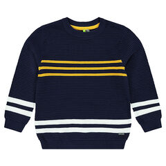 Ottoman knit sweater with contrasting bands