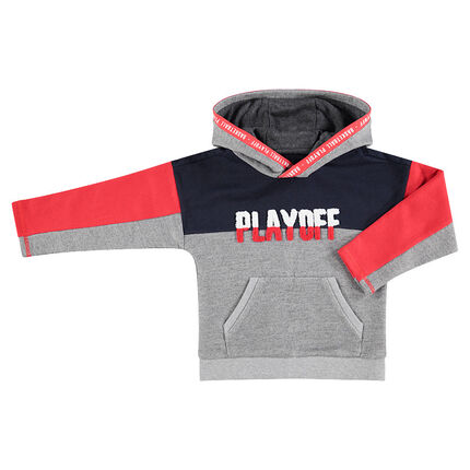 Tricolor hooded sweatshirt with French terry message
