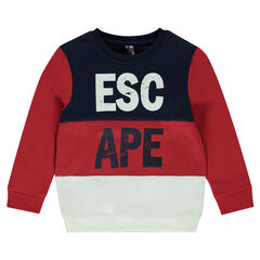 Tricolored fleece sweatshirt with crinkled writing effect