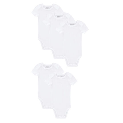 Set of 5 plain-colored short-sleeved jersey bodysuits