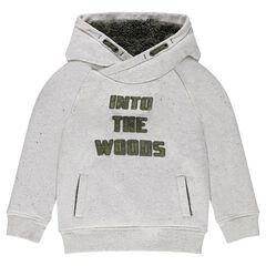 Fleece sweatshirt with a sherpa-lined hood
