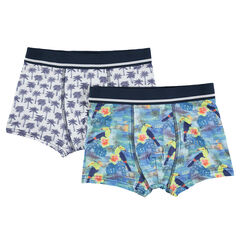 Junior - Set of 2 boxers with palms and toucans motifs
